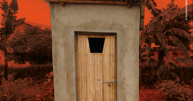 World Toilet Day 2020 underlines link between sustainable sanitation and climate action
